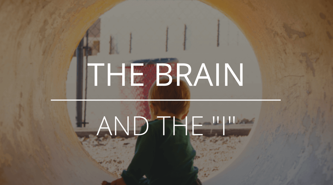 "the brain and the ""I"""